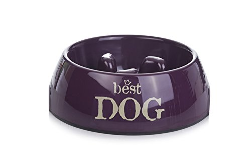 Beeztees 650362 Anti Schling Best Dog, 22 x 7.5 cm, violett