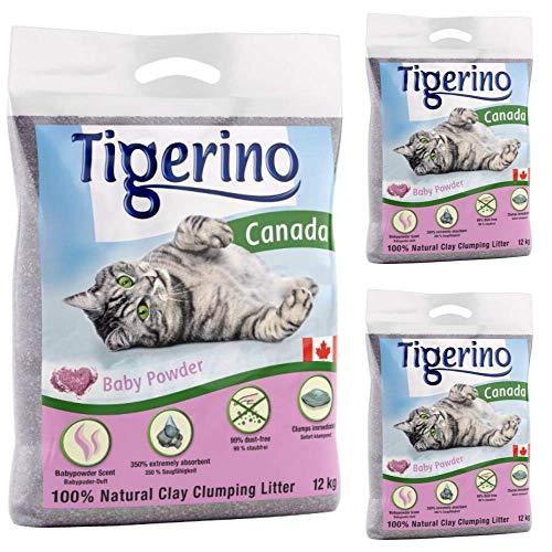 Tigerino Canada Katzenstreu, klumpend, Babypuderduft, 3 x 12 kg, parfümiert, antibakteriell,...